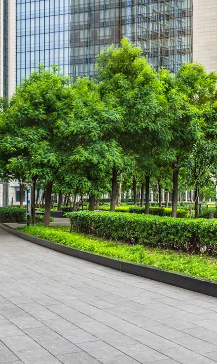 City Limits Landscaping & Snow Removal Commercial Grounds Maintenance