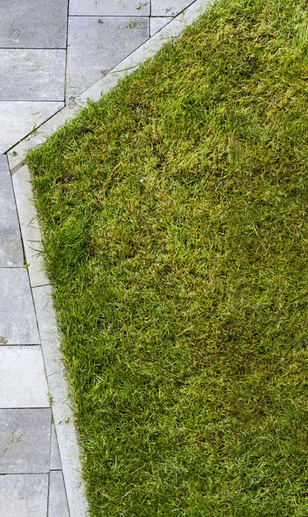 City Limits Landscaping & Snow Removal Lawn Dethatching