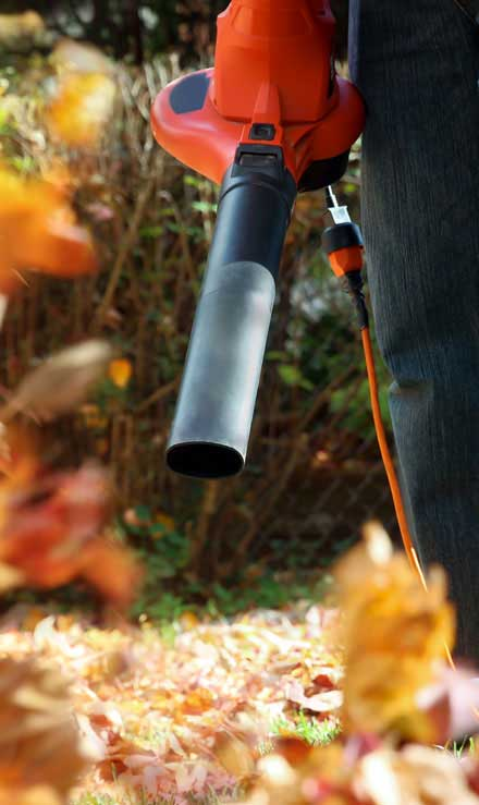 City Limits Landscaping & Snow Removal Leaf Removal