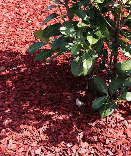 City Limits Landscaping & Snow Removal Mulching