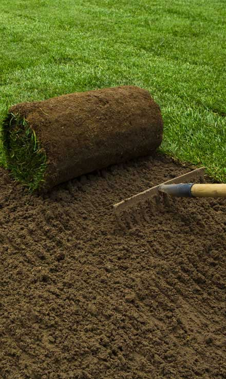 City Limits Landscaping & Snow Removal Sod Installation